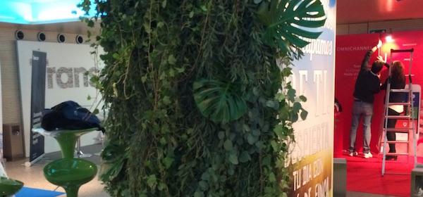 Especialistas jardines verticales