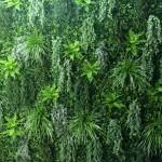 Jardin vertical empresas 12