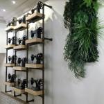Jardin vertical empresas 4