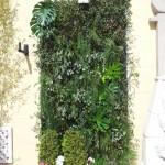 Jardin vertical eventos 15