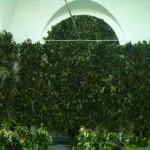 Jardin vertical eventos 9
