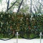 Jardin vertical eventos 23