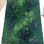 Jardin vertical musgo preservado 3