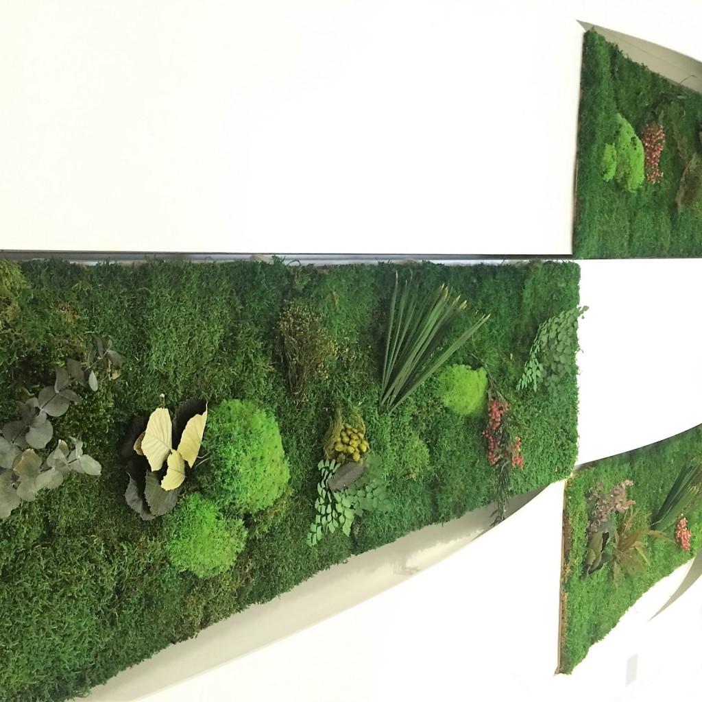 Jardines verticales musgo preservado en venta y alquiler for Jardin vertical mercadolibre